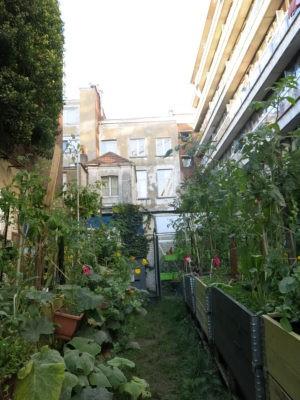 Transition Town Treffen im Dachgarten zum Thema Bauen am 16.7. –  und Ausstellungseröffnung am 19.7.