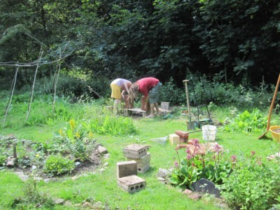 Eindrücke aus dem Garten Siepental